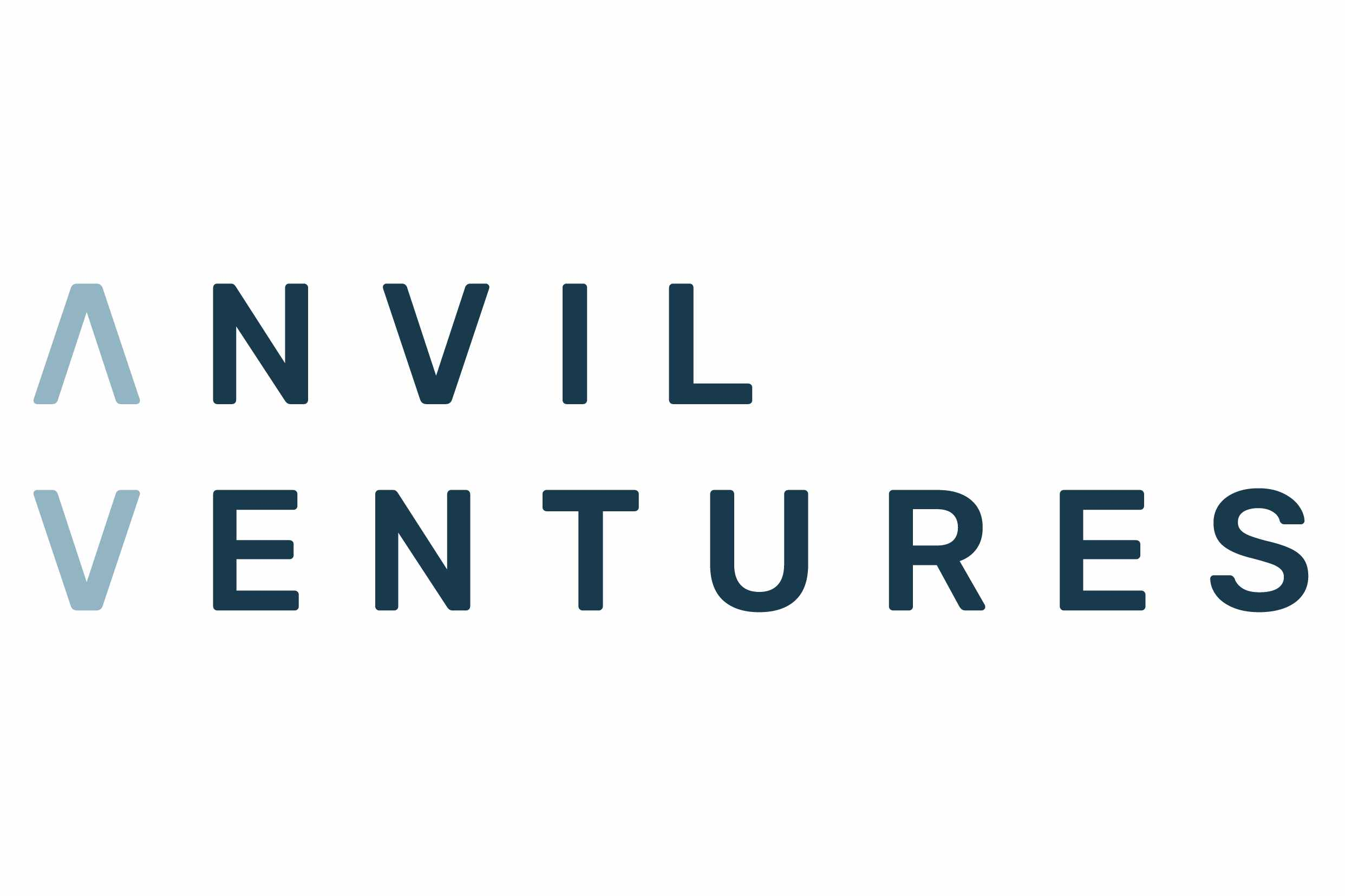 Introducing Anvil Ventures: An Information Security Consulting Partnership